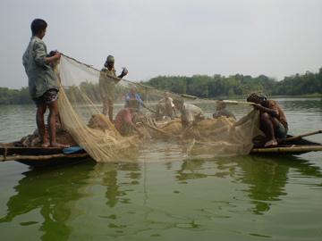 fish-catching