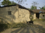 mud-built-house
