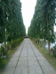 Inside road (5) in montu miyar bagan bari