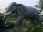 Statue (10) in montu miyar bagan bari