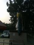 Statue (15) in montu miyar bagan bari