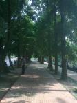 Jatiyo Sriti Shoudho-National Martyrs' Memorial-Road