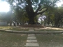 The Ramna Park, a place of greenery in the heart of Dhakacity